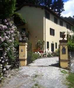 Overlooking Tuscany - Aquilea