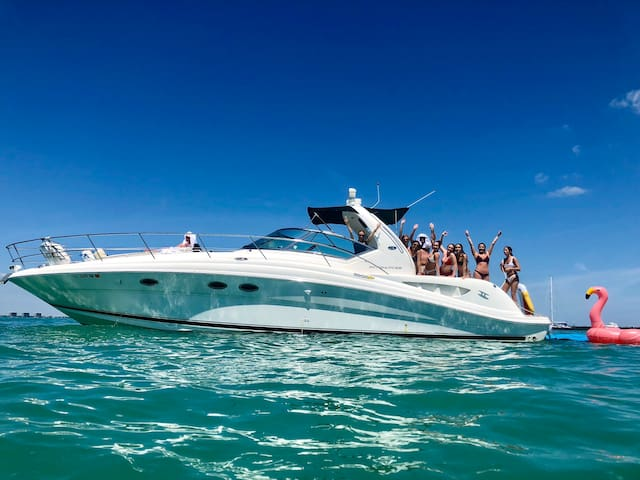 Half/Full Day Private Charter on 45' Sea Ray Yacht