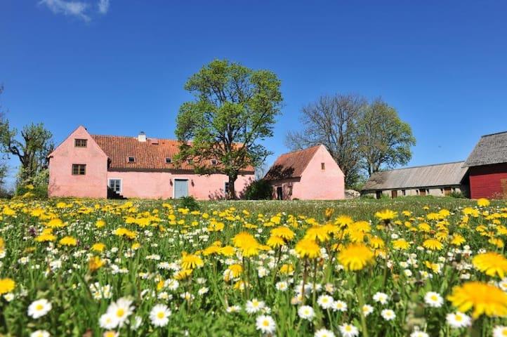 Vacker historisk gotlandgård - Gotland - บ้าน