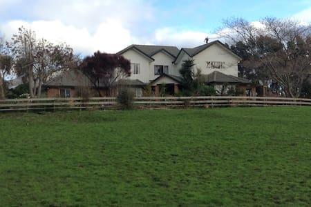 Rural yet close to Auckland City - Runciman