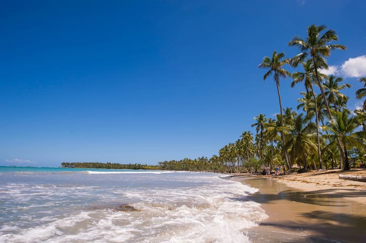 Spectacular 3 Bedroom Condo on the Beach - Las Terrenas - Appartement