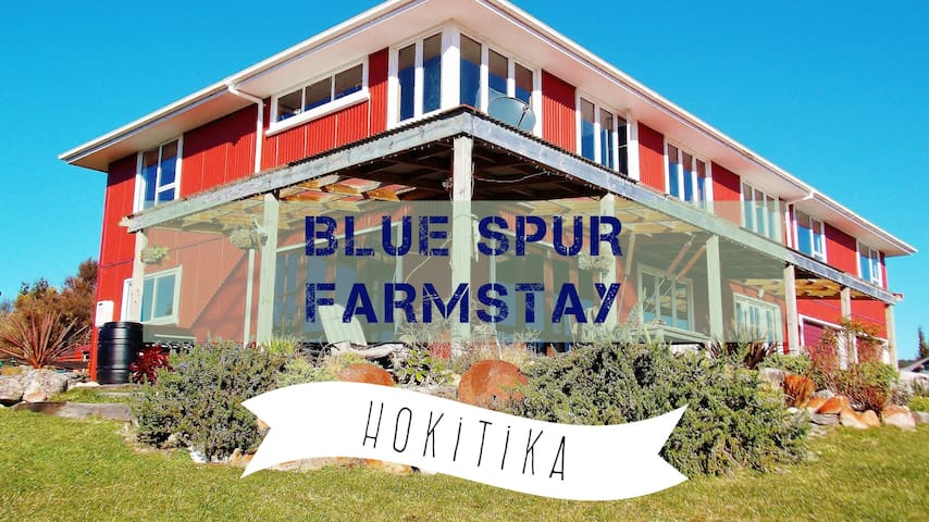 Blue Spur Farmstay Eco-home Hokitika, see animals!