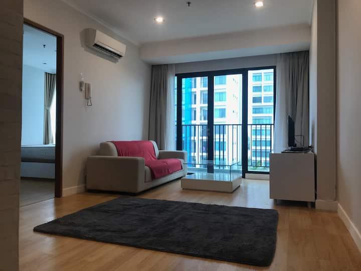 Bright spacious minimalist apartment in expat area