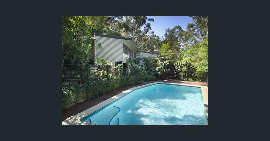 Rainforest Haven. Resort style property - Currumbin Waters - House