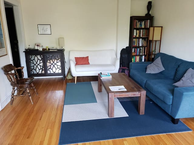 Sunny, spacious apartment in Hyde Park (UChicago)