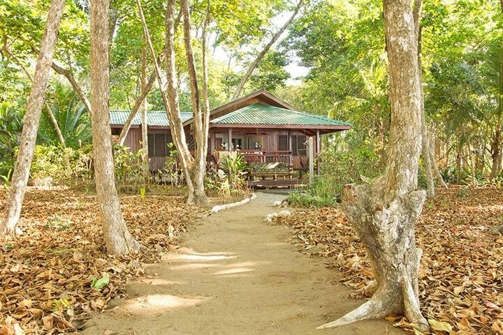 View of Beach Casa from Beach