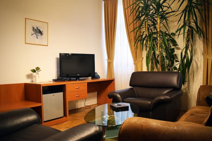 beautiful apartment Čurug
