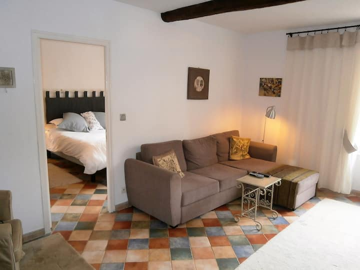 Luxury apartment on the square in Saint-Chinian