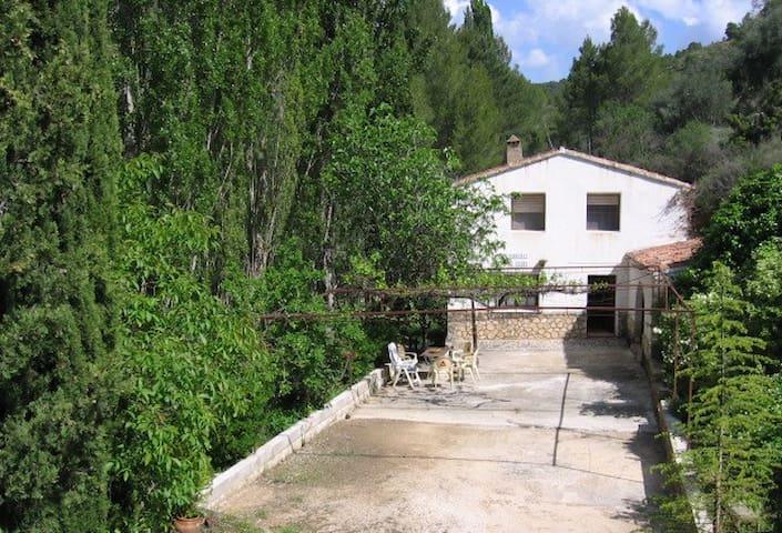 Casa de la HIGUERA, Molinicos - Molinicos - Chalet