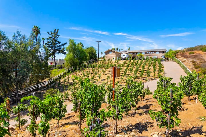 North Cty San Diego Estate Vineyard & Condo 1 bdrm