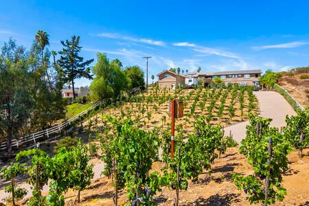 Secluded 1 bd North Cty San Diego Estate Vineyard