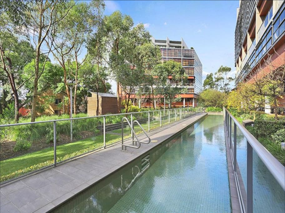 Swimming Pool Access Apartments For Rent In Kensington New South Wales Australia