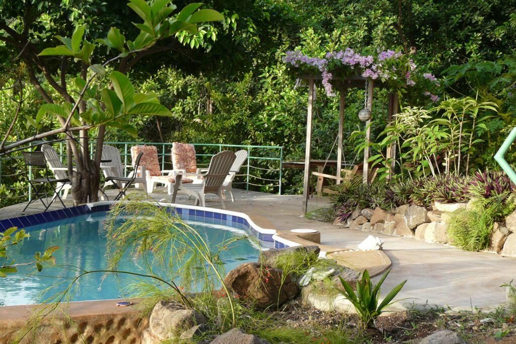 Sea Shells 2 Bed Apartment Wohnungen Zur Miete In Port Elizabeth Grenadines St Vincent Und