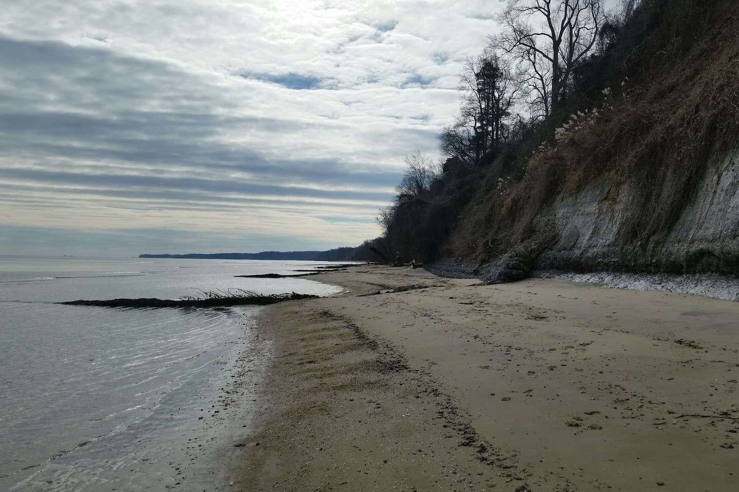 Your beach walk extends for miles of fossils