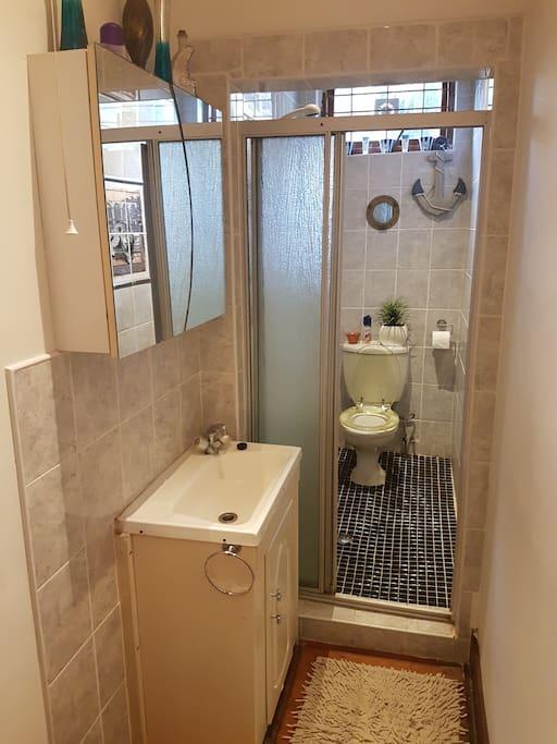 basin outside toilet
