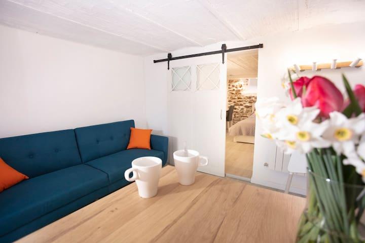 Sofa, Dining table, Door to bedroom