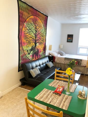 NEWLY RENOVATED BACHELOR APARTMENT CLOSE TO CANAL