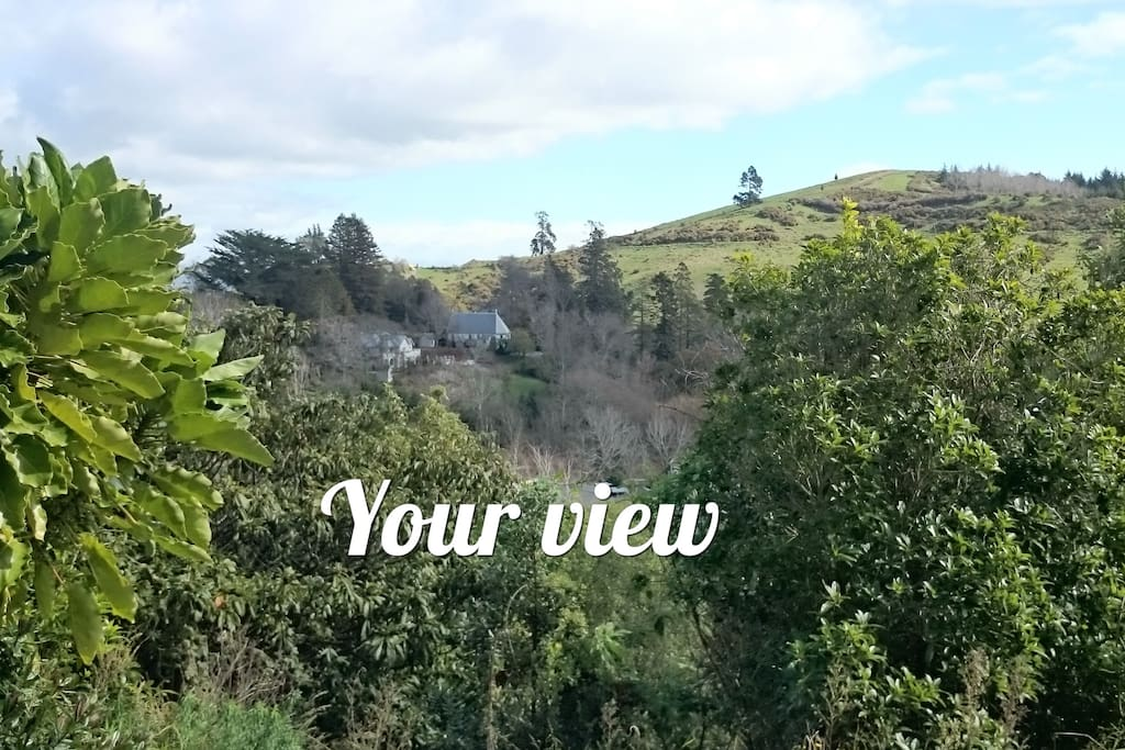 """View at the front of your studio. 