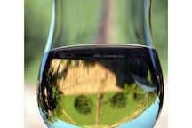Mosel Wine