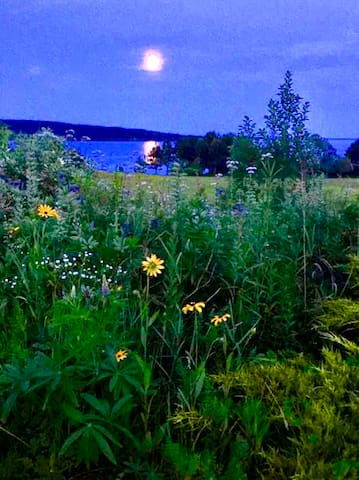 Full Moon over Blue Hill Bay - Long Island in the distance. Largely uninhabited, Buffalo used to roam there. Really.
