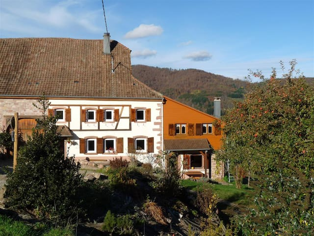 """""""Un coin de Paradis""""  pleine NATURE centre Alsace - Sainte-Croix-aux-Mines - House"""
