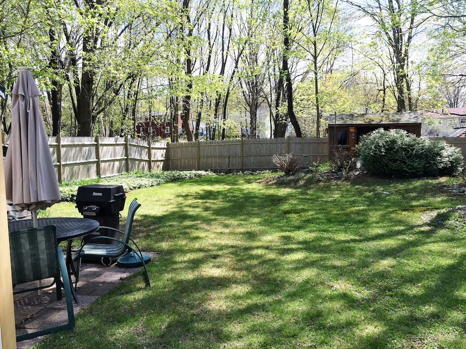 Fenced in backyard with patio and grill