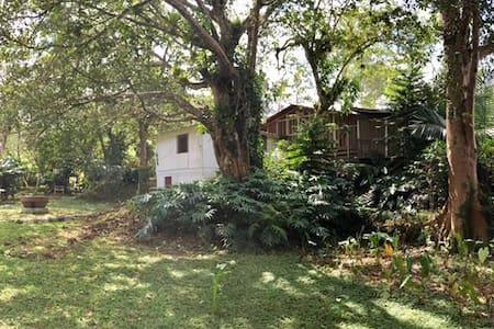 Villa Gallo Staff 24/7 Peace & Nature - Constanza - Huis