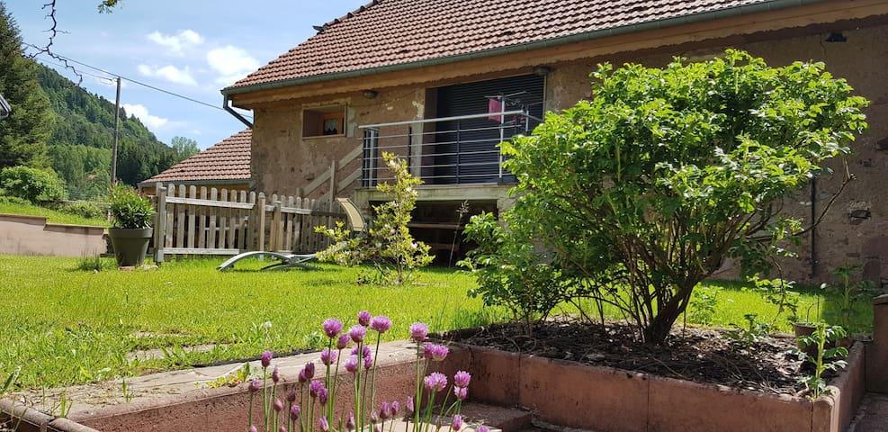 Gîte Emeraude et jardin