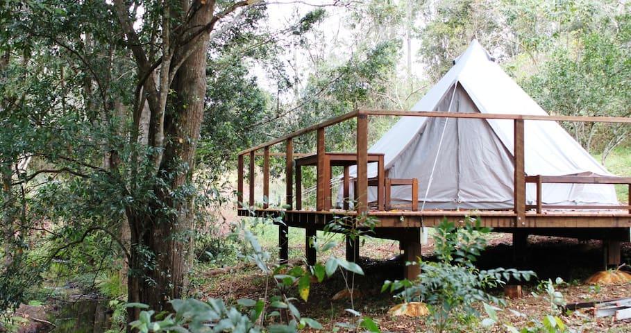 Luxury glamping tent with magnesium salt lap pool