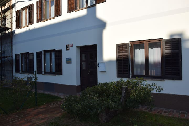 Andron: new apartment in an old house.