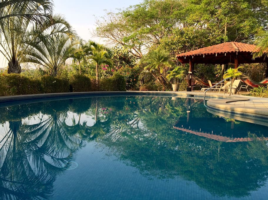 Your beautiful and private pool with plenty of outdoor furniture and hammocks