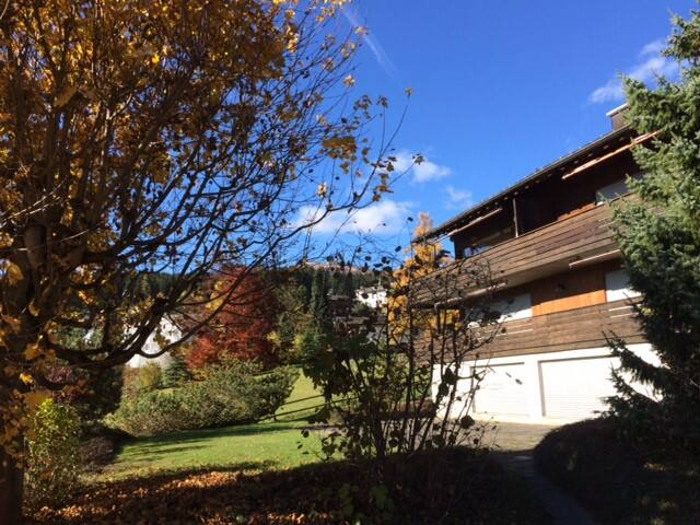 Sunny flat in chalet in Flims - Flims - อพาร์ทเมนท์
