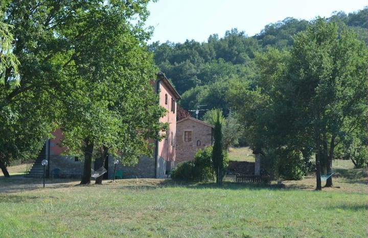 Casale panoramico nel verde toscano_Granaio_1piano