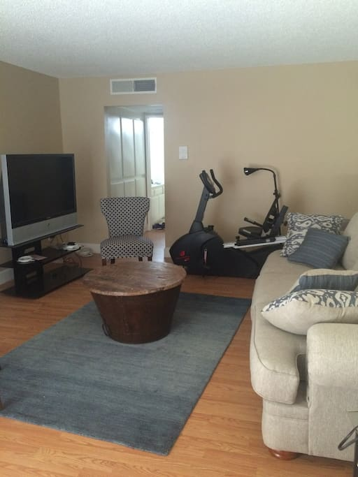 TV, couch, recumbent bike.