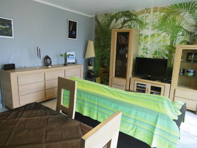 APPARTEMENT PROCHE NANCY THERMAL - PARC ST MARIE