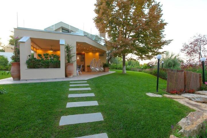 Villa Anemone Sani Chalkidiki