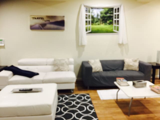 Private Fully Self Contain 2bd 1.5ba Basement Loft - Bowie - House