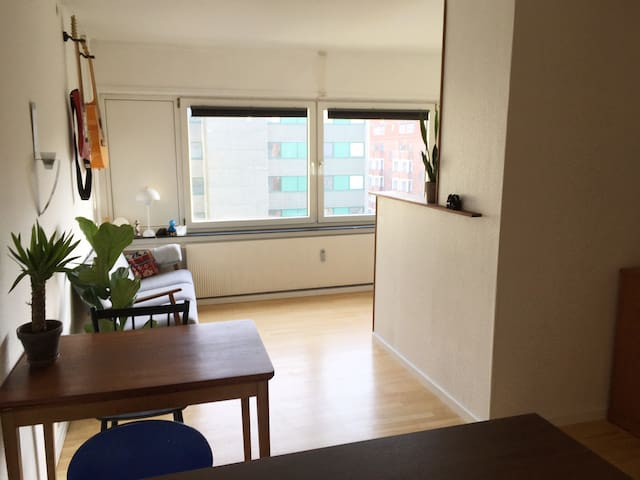 Apartment in the Best Area of Center Copenhagen