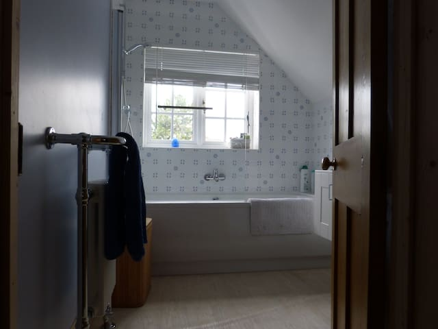 Guest's bathroom with shower, basin and toilet