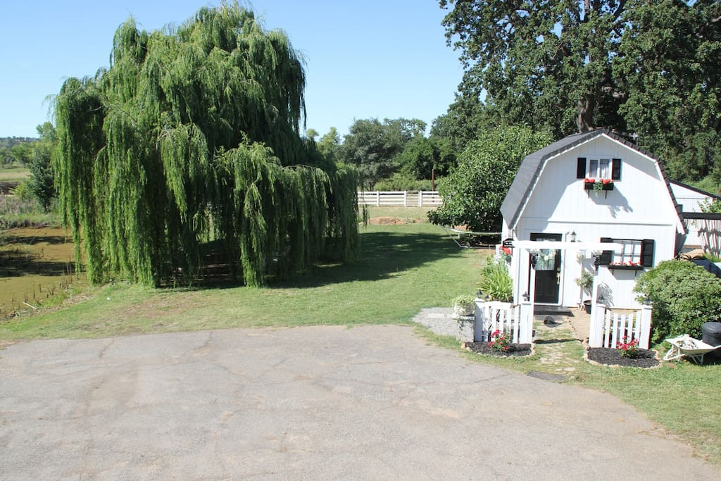 Plenty of parking to the left of the cottage....and relax under the shady willow tree.