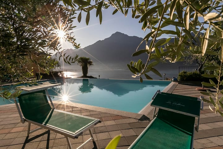 Lake Como - Residence La Collina - Mirtillo