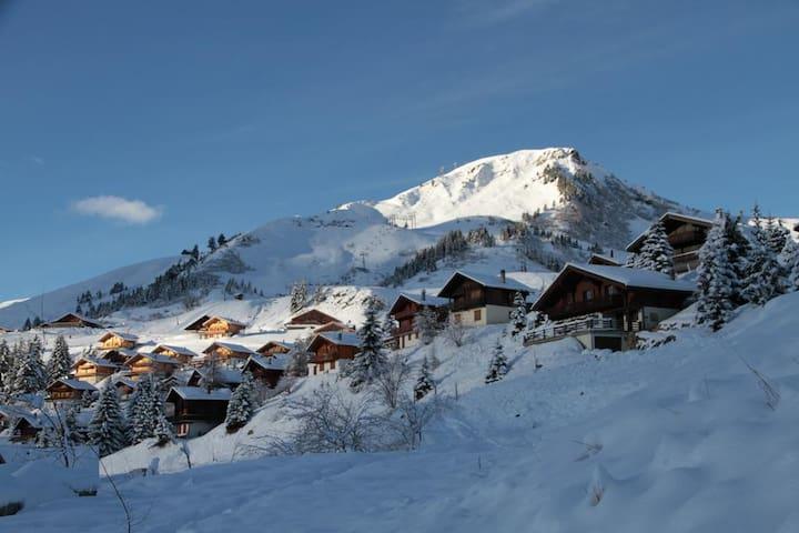 Scia in Svizzera su 650 km di piste - Val-d'Illiez - 分時度假住宿