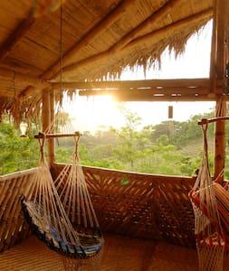 Ocelote Guesthouse and Volunteer Project - Camarones - Dom