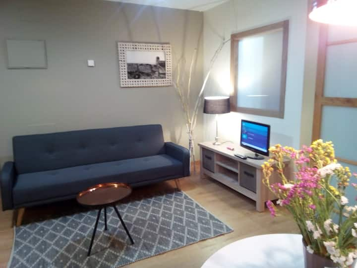 Coqueto Apartamento  Centro de Vigo con WIFI