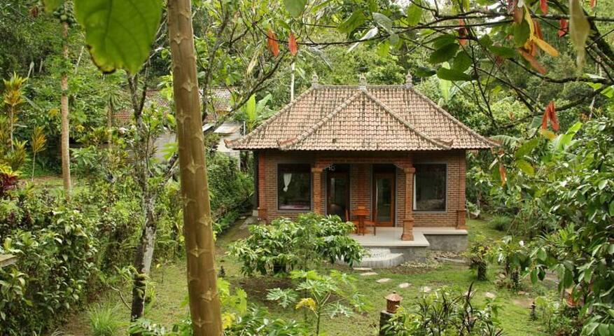 Dina Homestay by the base of batukaru mounthain