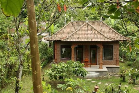 Dinas Beautiful outdoor Homestay