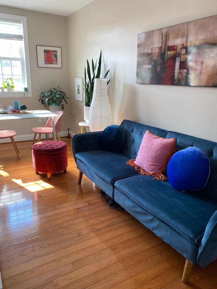 Sunlit one-bedroom in the heart of bustling DC