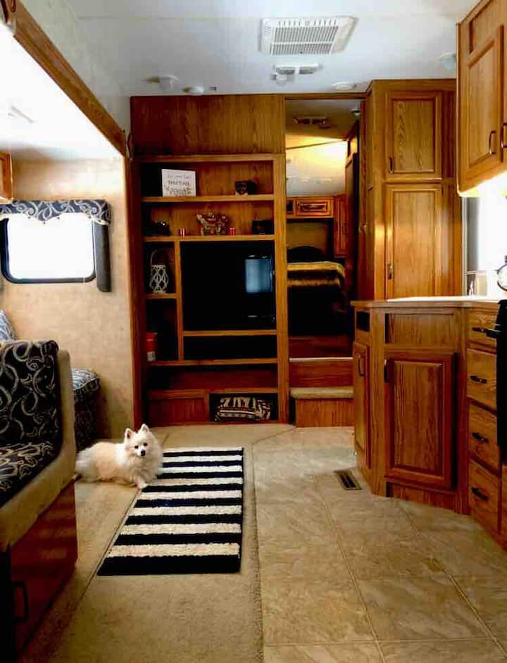 Peace and Serenity. New RV-Wrapped around nature.