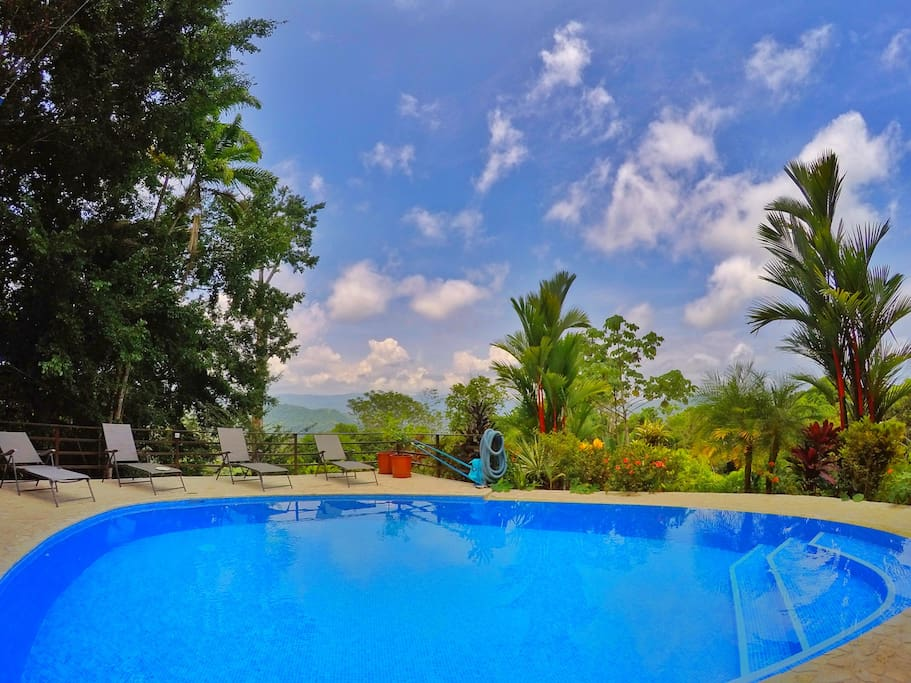 Refreshing pool with a view. we provide rafts and floaties for the kids and toddlers.