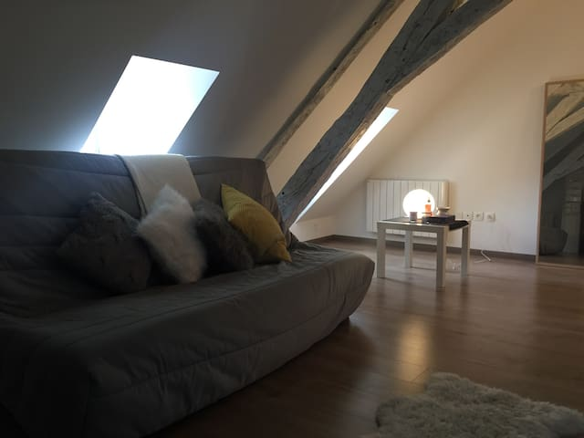 Appartement cosy dans la veille ville - Montluçon - Appartement